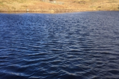 Lochan-Eck-14-March-2019-1-scaled-e1586272460479
