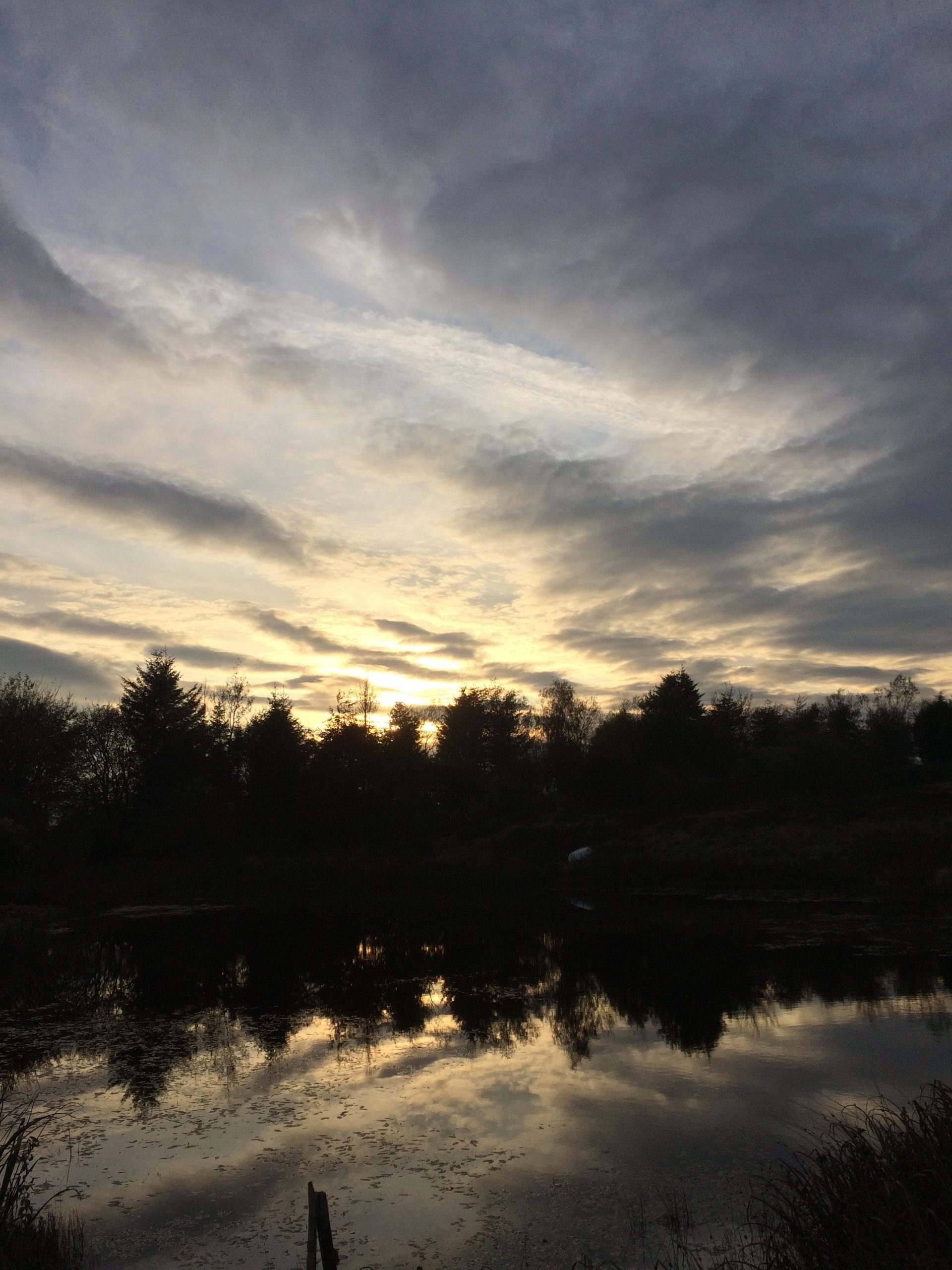 OCTOBER-IMG_6604-scaled
