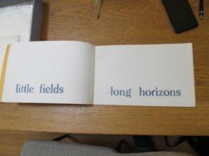 Little Fields, Long Horizons